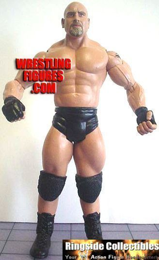 Ruthless Aggression 04 (2003) 796_figure2